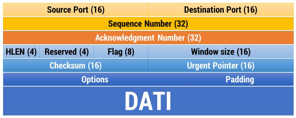 Figura 24: Segmento TCP
